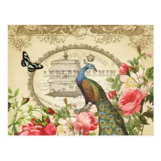 ヴィンテージのフランスのな孔雀の郵便はがき 葉書き