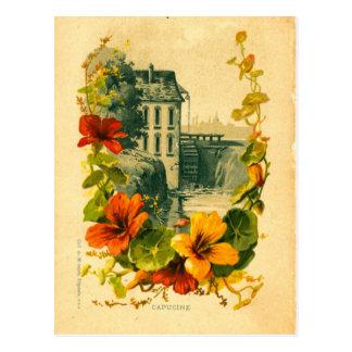 ヴィンテージのフランスのな景色またはキンレンカの郵便はがき ポストカード