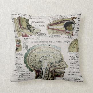 ヴィンテージのフランスのな解剖学のアメリカ人のMoJoの枕 クッション