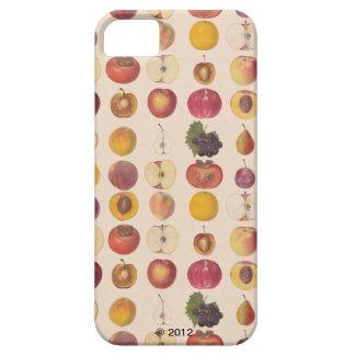 ヴィンテージのフルーツパターン iPhone SE/5/5s ケース