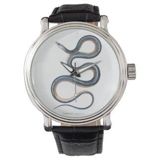 ヴィンテージのヘビのスケッチのビクトリアンなアールヌーボーのヘビ 腕時計