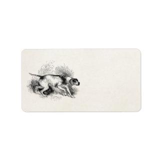 ヴィンテージのポインターの猟犬の19世紀のポインター犬 宛名ラベル