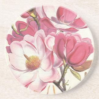 ヴィンテージのマグノリアの木の花、ピンクの庭の花 コースター