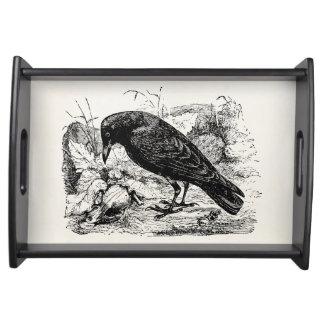 ヴィンテージのヨーロッパのハシボソガラスの鳥のカラスの鳥 トレー