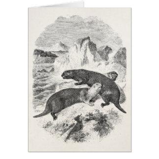 ヴィンテージのラッコの19世紀のカワウソのイラストレーション カード