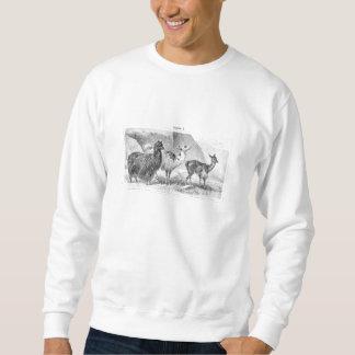 ヴィンテージのラマのアルパカのテンプレートのラマのアルパカ スウェットシャツ