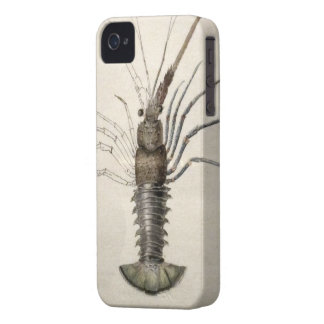 ヴィンテージのロブスターのアートワーク Case-Mate iPhone 4 ケース