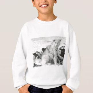 ヴィンテージの北極生命、グリーンランド スウェットシャツ