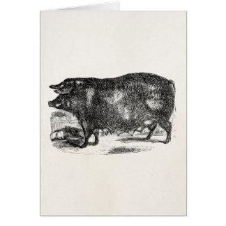 ヴィンテージの国内ブタのコブタの名前入りな動物 カード