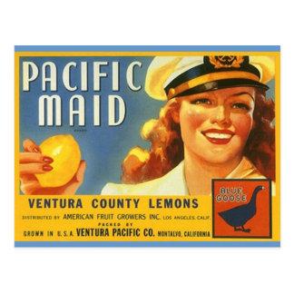 ヴィンテージの太平洋の女中レモン船員Galの郵便はがき ポストカード