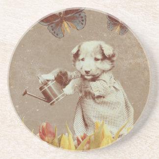 ヴィンテージの子犬によっては蝶グランジなIIIが開花します コースター