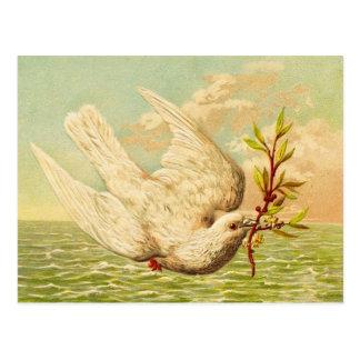 ヴィンテージの平和鳩 ポストカード