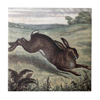 ヴィンテージの引くこと: 分野の連続したノウサギ タイル