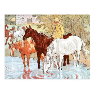 ヴィンテージの引くこと: 池から飲んでいる馬 ポストカード