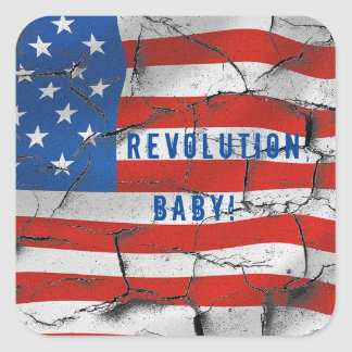 ヴィンテージの旗の改革、ベビー! スクエアシール
