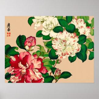 ヴィンテージの日本人のツバキ。 ベージュ色で濃いピンク ポスター