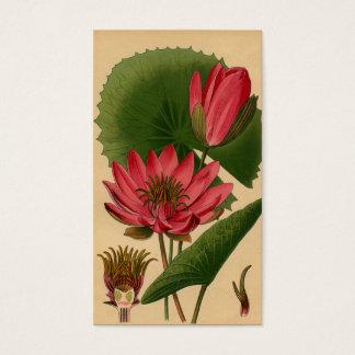 ヴィンテージの植物のプリントのピンクのスイレンのはす 名刺