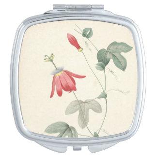 ヴィンテージの植物の水彩画のPassifloraの鏡