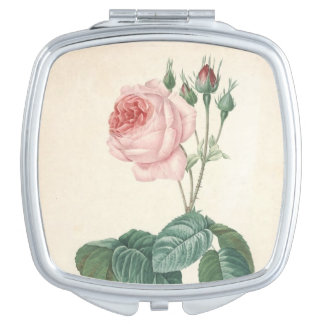 ヴィンテージの植物の水彩画はとの鏡-上がりました