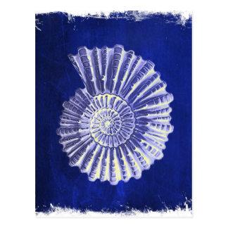 ヴィンテージの植物の沿岸青く白い貝殻 ポストカード