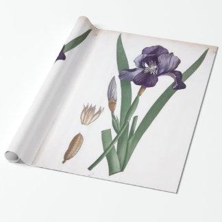 ヴィンテージの植物の紫色のアイリス花 ラッピングペーパー