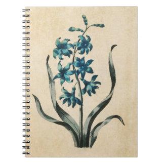 ヴィンテージの植物の花のHyacinthのイラストレーション ノートブック