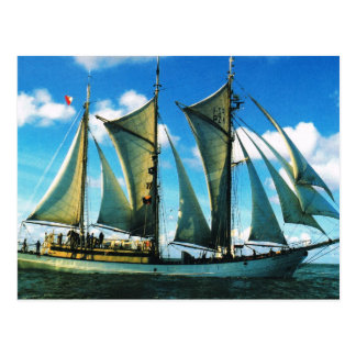 """ヴィンテージの歴史的な船、ポーランド、""""Zarwia Czarrny """" ポストカード"""