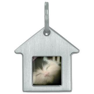 ヴィンテージの毛皮の白黒の子ネコのレトロの子猫猫の芸術 ペットネームタグ