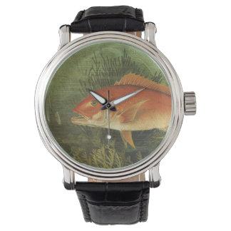 ヴィンテージの海洋生物、海のバラフエダイの魚 腕時計