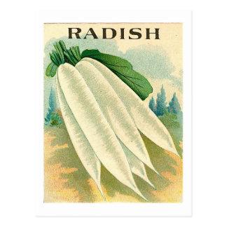 ヴィンテージの白いラディッシュの種の包みの郵便はがき ポストカード