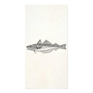 ヴィンテージの白亜の魚-水中競技はテンプレートを採取します カード