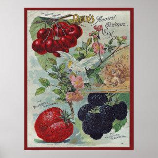 ヴィンテージの種カタログカバー ポスター