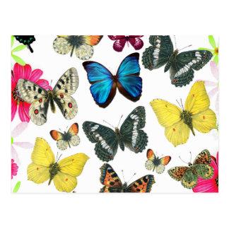 ヴィンテージの紫系統の黄色のカラフルの蝶 ポストカード