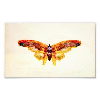 ヴィンテージの紫色および黄色の蝶写真のプリント フォトプリント