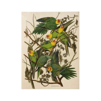 ヴィンテージの緑のインコのオウム ウッドポスター