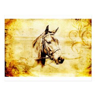 ヴィンテージの美術F075の馬 ポストカード