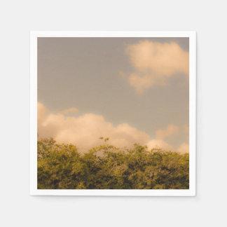 ヴィンテージの自然のテーマのナプキン スタンダードカクテルナプキン