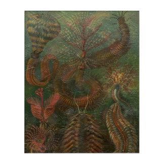 ヴィンテージの自然場面 アクリルウォールアート