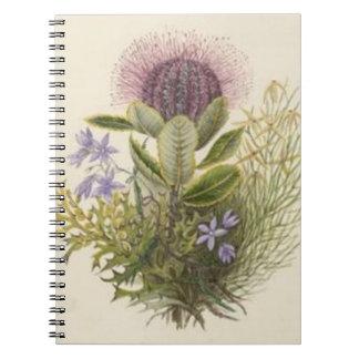 ヴィンテージの花のアザミのノート ノートブック