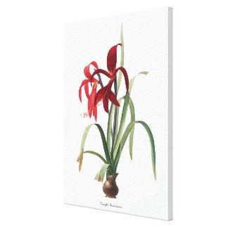 ヴィンテージの花の絵の植物のキャンバスのプリント キャンバスプリント