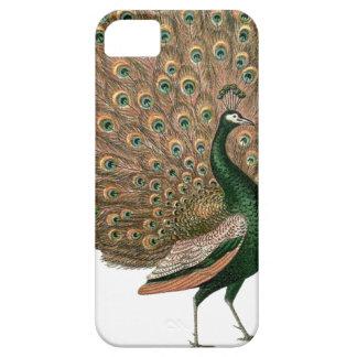 ヴィンテージの芸術のクジャク(孔雀)のplummageの緑金ゴールド iPhone SE/5/5s ケース