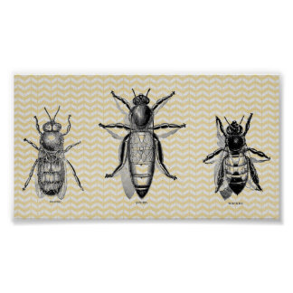 ヴィンテージの蜂の芸術 ポスター