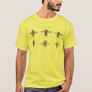 ヴィンテージの蜂の蜂の蜂蜜の科学的なイラストレーション Tシャツ