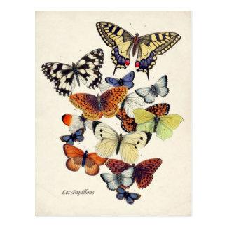 ヴィンテージの蝶 ポストカード