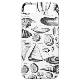 ヴィンテージの貝殻 iPhone SE/5/5s ケース