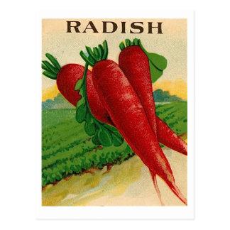 ヴィンテージの赤いラディッシュの種の包みの郵便はがき ポストカード
