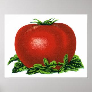 ヴィンテージの赤い熟したトマト、野菜およびフルーツ プリント