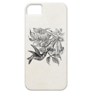ヴィンテージの赤いThroatedハチドリの鳥のテンプレート iPhone SE/5/5s ケース