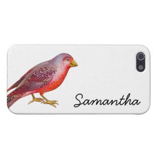 ヴィンテージの赤の鳥 iPhone 5 カバー