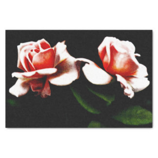 ヴィンテージの雑種の茶バラの写真 薄葉紙